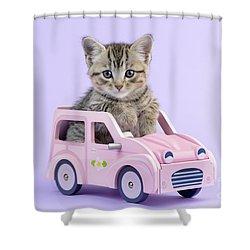 Kitten In Pink Car  Shower Curtain by Greg Cuddiford