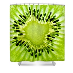 Kiwism Shower Curtain by Delphimages Photo Creations