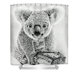 Koala Oxley Twinkles Shower Curtain by Remrov