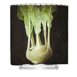 Kohl Rabi, 2012 Acrylic On Canvas Shower Curtain by Lincoln Seligman