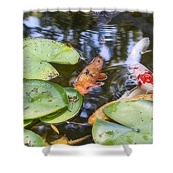 Koi And Lily Pad Shower Curtain by Jamie Pham