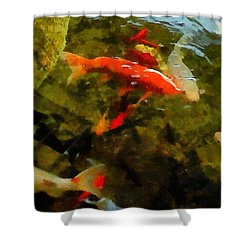 Koi Pond Shower Curtain by Michelle Calkins