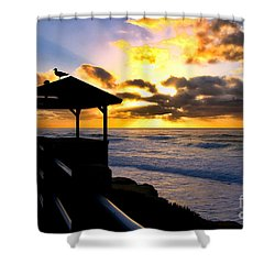 La Jolla At Sunset By Diana Sainz Shower Curtain by Diana Sainz