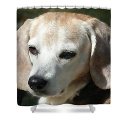 Lady 16 Shower Curtain by April Patterson