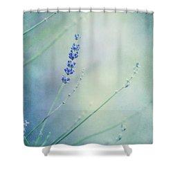 Laggard Shower Curtain by Priska Wettstein