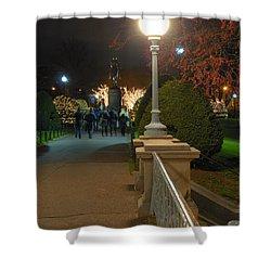 Lagoon Bridge Lights Shower Curtain by Joann Vitali