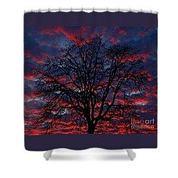 Lake Oswego Sunset Shower Curtain by Nick  Boren