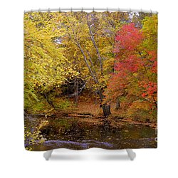 Lamprey In Fall Shower Curtain by Eunice Miller