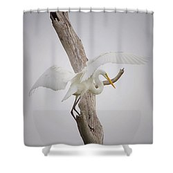 Landing Shower Curtain by Kim Hojnacki