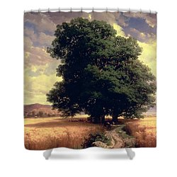 Landscape With Oaks Shower Curtain by Alexandre Calame