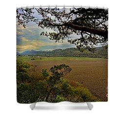 Large Cornfield In Valley Shower Curtain by Dan Friend