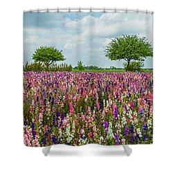 Larkspur Fields Forever Shower Curtain by Lynn Bauer