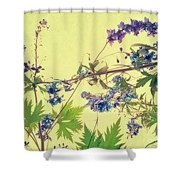 Larkspur Shower Curtain by Priska Wettstein