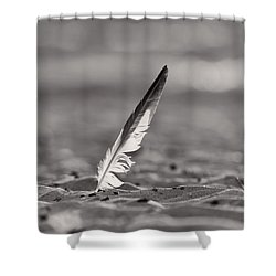 Last Days Of Summer In Black And White Shower Curtain by Sebastian Musial