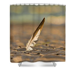 Last Days Of Summer Shower Curtain by Sebastian Musial