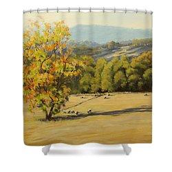 Last Rays Shower Curtain by Karen Ilari