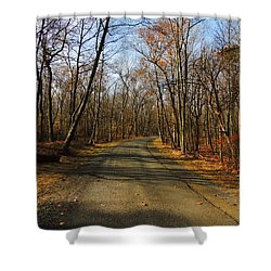 Late Fall At Cheesequake State Park Shower Curtain by Raymond Salani III