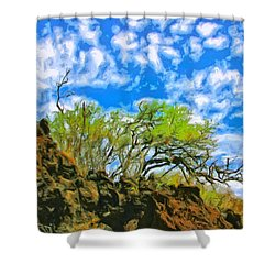 Lava And Keawe At Makena Beach Shower Curtain by Dominic Piperata