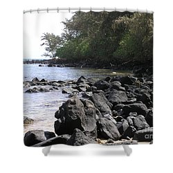 Lava Rocks Shower Curtain by Mary Deal