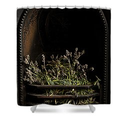 Lavender Fire Shower Curtain by Anne Gilbert