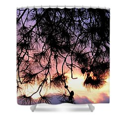 Lavender Sunset Painting Shower Curtain by Will Borden