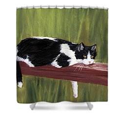 Lazy Day Shower Curtain by Anastasiya Malakhova
