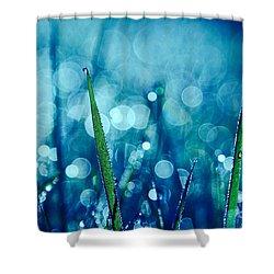 Le Reveil 03 Shower Curtain by Aimelle