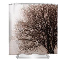 Leafless Tree In Fog Shower Curtain by Elena Elisseeva