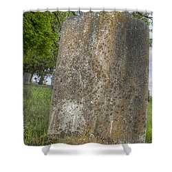 Leaning Over Shower Curtain by Jean Noren