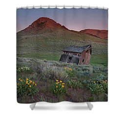 Leaning Shed Shower Curtain by Leland D Howard