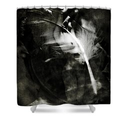 Leda And The Swan Shower Curtain by Rebecca Sherman