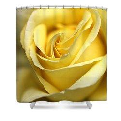 Lemon Lush Shower Curtain by Joy Watson