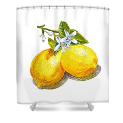 Lemons And Blossoms Shower Curtain by Irina Sztukowski