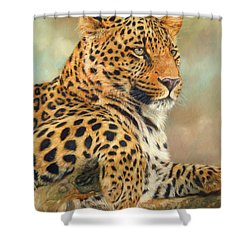 Leopard Shower Curtain by David Stribbling