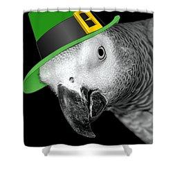 Leprechaun Parrot Shower Curtain by Mim White