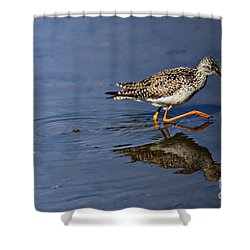 Lesser Yellowlegs Shower Curtain by Elizabeth Winter