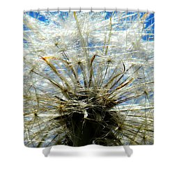 Life In Details Shower Curtain by Andrea Anderegg