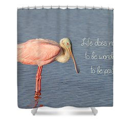 Life Wonderful And Perfect Shower Curtain by Kim Hojnacki
