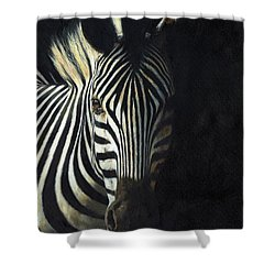 Light And Shade Shower Curtain by David Stribbling