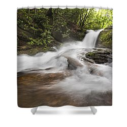 Light In The Forest Shower Curtain by Debra and Dave Vanderlaan