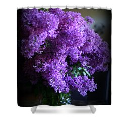 Lilac Bouquet Shower Curtain by Kay Novy