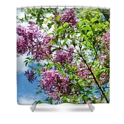 Lilacs And Clouds Shower Curtain by Susan Savad