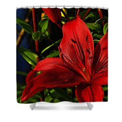 Lilies By The Water Shower Curtain by Randy Hall