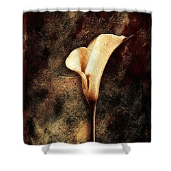 Lilly 2 Shower Curtain by Mauro Celotti