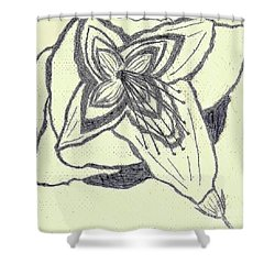 Lilly Artistic Doodling Drawing Shower Curtain by Joseph Baril
