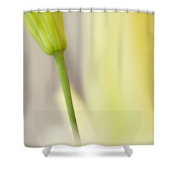 Lily Delight. Floral Abstract Shower Curtain by Jenny Rainbow