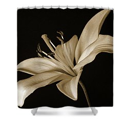 Lily Shower Curtain by Sandy Keeton