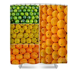 Limes Lemons Oranges Shower Curtain by Sabine Jacobs
