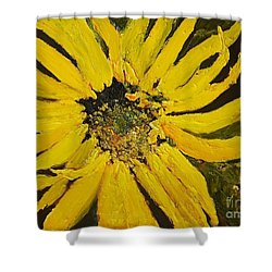 Linda's Arizona Sunflower 2 Shower Curtain by Sherry Harradence
