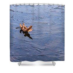 Little Navy - Fram In Pack Ice - Featured 3 Shower Curtain by Alexander Senin